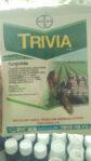 Trivia 75WP 50 Gram